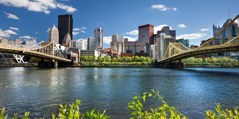 Commercial Pest Control in Pittsburgh